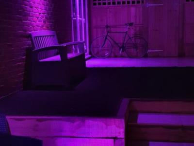 Colour changing LED Garden lighting in Brighton Purple