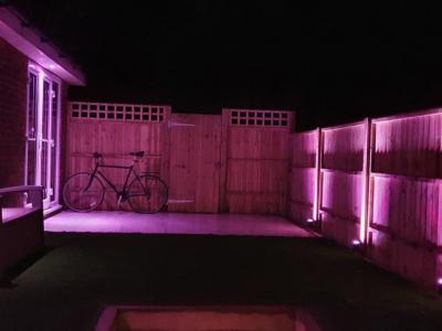 Colour changing LED Garden lighting in Brighton - Purple